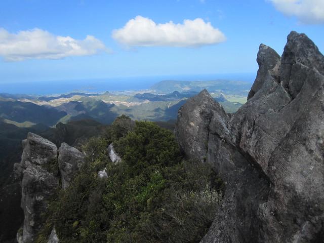 Kauaeranga Kauri Trail 16 by Ben Beiske