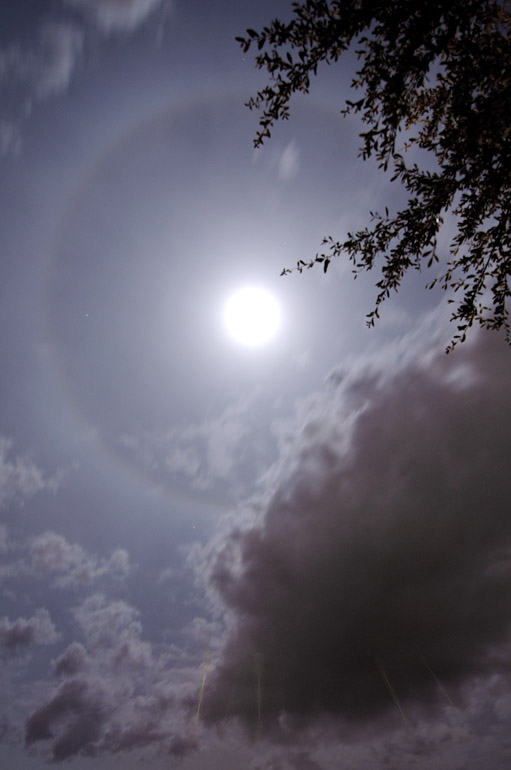 web_bluemoon_halo_0050_2407