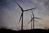 windmills @ andaluzia