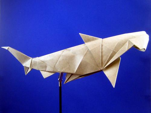 Origami Hammerhead Shark Hammerhead Shark