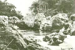 publicos 039 (flegisto) Tags: 1922 miralles albumdemiralles