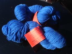 Sapphire Juniper