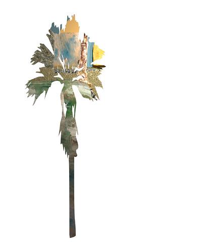 Nazareth-Palm-Tree