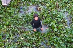 (Flash Parker) Tags: travel river fishing delta vietnam waters murky mekong flashparkerphotography vietnam25916