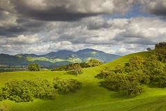 Diablo Spring #1 - Lafayette, California (PatrickSmithPhotography) Tags: california sky tree canon landscape oak lafayette cumulus 5d diablo walnutcreek pleasanthill mkii 5dmkii contraconsta