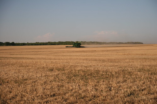 A lone combine gets full at the end of the field and prepares to dump.