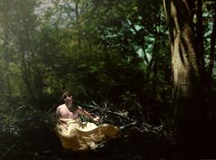 [フリー画像] 人物, 男性, 人と風景, 森林, アメリカ人, 201105310500