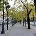 Madrid_0108