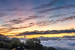 台東鹿野高台晨光逐浪 (JIMI_lin) Tags: taiwan 台東 鹿野鄉 鹿野高台 日出 sunrise 火燒雲 雲海 霞光