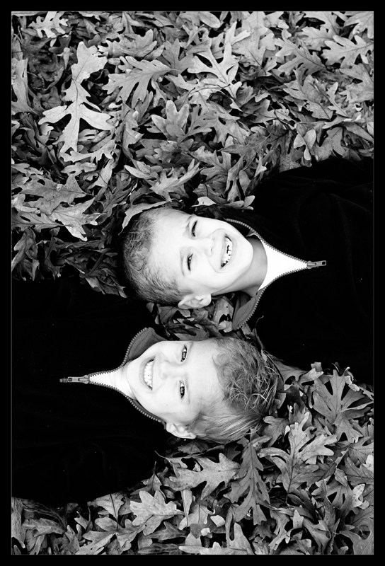 brothers leaves bw blog