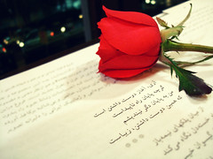 (m.ehdi.in/flickr) Tags: birthday rose poem   foroughfarrokhzad mywinners flickraward  flickrestrellas