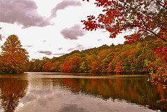 Colors on a rainy Day! (ineedathis) Tags: autumn trees sky newyork water colors clouds reflections pond rainyday longisland autumncolors leafs coldspringharbor