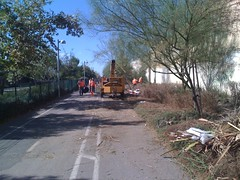 Orange Line Busway Cleanup - 1