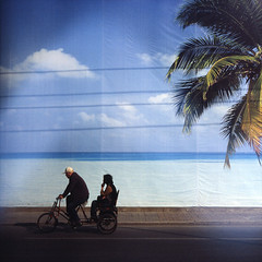 paradise road (memetic) Tags: ocean china street blue sky tree 6x6 beijing palm explore powerlines tropical backdrop driver passenger   frontpage provia pedicab sanlitun struggle p6 pentaconsix