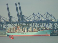 Sine Maersk (Yorkshire's Finest) Tags: suffolk containership felixstowe buoyant maerskline riverorwellmaersk