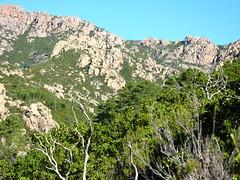 Cible en vue : crête de Cervi et col 971 m sur le GR 20 (arrivée du sentier)
