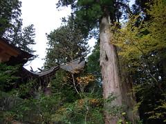 DSCN3681 (Tamago Moffle) Tags: japan shrine gun village district dai  mura nara  yoshino   tenkawa tenkawamura  benzaiten    yoshinogun narapref tsubouchi  tenkawavillage yoshinodistrict tenkwamura