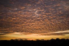 13/365: Sunrise II