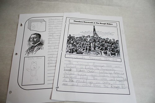 roosevelt notebooking pages