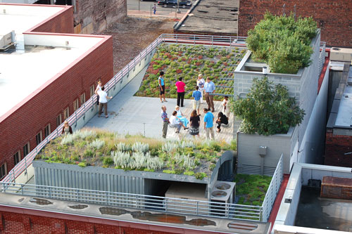ASLA's green roof from above (by: ASLA)