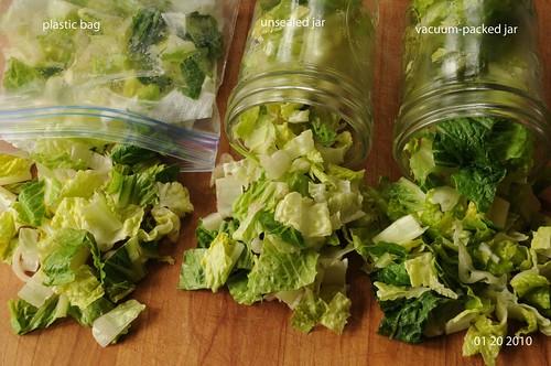 01-20-10 lettuce