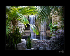 Waterfall (Craig Schultz) Tags: water palms waterfalls mywinners anawesomeshot