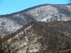 "IMG_5339 (Claire DeLand ~ ""GA Music Maker"") Tags: winter snow mountains ice nature scenic blueridgemountains wnc brp scenicdrive g9 winter2010 westvirginiaturnpike"