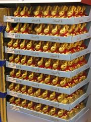 2010 Mar 21 Chocolate Easter Bunnies (rhondda.p) Tags: easter chocolate easterbunny