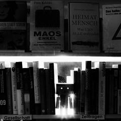 Gesellschaft & Zeifragen (dongga BS) Tags: blackandwhite bw texture buch square book amazon flash books 11 sw blitz schwarzweiss bcher quadratisch danbo revoltech canoneos50d ef35mmf14lusm danboard amaznli rapunzelbuchhandlungbcheramaznlibuch