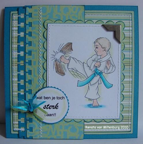 kaarten april 2010 008