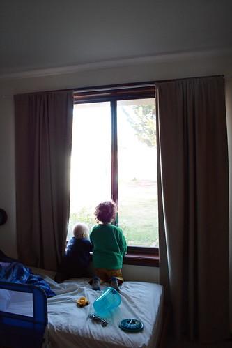 LZ Window_0003