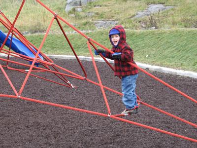owen climbs the web
