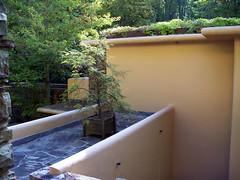 100_0581 (sevargmt) Tags: bear house modern frank pennsylvania run lloyd wright fallingwater