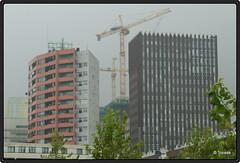2009-08-12 Cit 1 (Topaas) Tags: rotterdam cit kopvanzuid stadswonen