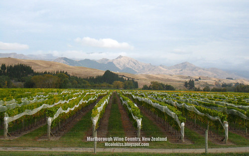 marlborough wallpaper_1280x800