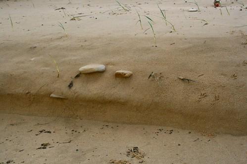 2009 Ile de Ré nov-dec 2009 058