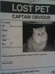 """Captain Obvious"""