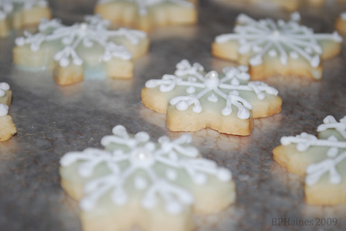 Christmas Cookies 2009 - 15