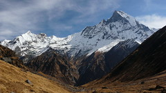 from ABC: view of Machhapuchhre, 6993 meters. (Eric Lon) Tags: nepal mountains yoga trekking abc guide himalaya mbc annapurnas ericlon
