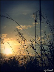 Hometown Glory (NoyEzman) Tags: sunset nature putatan theperfectphotographer kgcontoh
