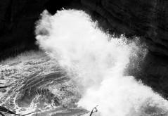 Splash! (P.E.S.H.) Tags: newzealand coast rocks whitewater waves cliffs nz limestone coastline punakaiki pancakerocks highway6 crashingwave 192dayslater