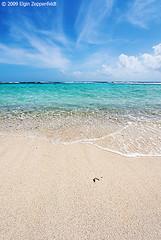 The Beach (elginz) Tags: ocean sea vacation seascape beach landscape paisaje aruba curacao tropicalisland caribbean reef bonaire landschap waterscape dutchantilles caribbeanisland dutchcaribbean elginz elginzeppenfeldt