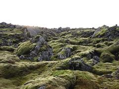 Iceland Landscape_003