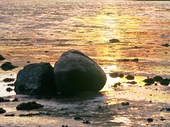 Rocks + sunset at Torryburn _4007 (gentoo2) Tags: sunset scotland fife forth torryburn forthestuary
