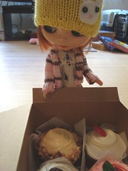Percy discovers the box from Frosted Cupcakery