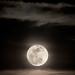 28-11-2013 José Navarro: Astrología Floral - Aprender a nutrir nuestro aspecto lunar
