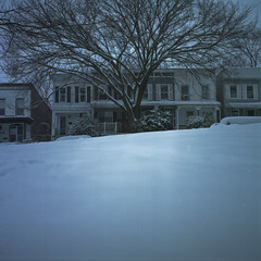 In My Secret Place (patrickjoust) Tags: park blue usa house snow cold color tree 6x6 tlr film home analog america square lens us reflex md focus fuji mechanical united patrick twin maryland row baltimore mat negative v 124g pro epson medium format snowing states manual 500 80 joust yashica hampden wyman rowhouse 220 rowhome estados ouside bluish 80mm f35 fujicolor c41 unidos yashinon v500 160s autaut patrickjoust