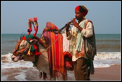 Sunday best Anjuna 2. Goa. (konstantynowicz) Tags: sea india beach cow goa anjuna mygearandmepremium mygearandmebronze mygearandmesilver