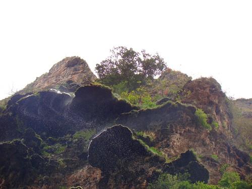 En el Cañón del Sumidero (65)