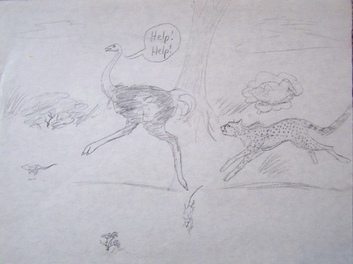 3rd grade 03 Cheetah chasing ostrich